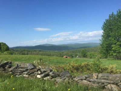 Helen Whtye: Exit 4 Development Is Bad Business For All Vermonters