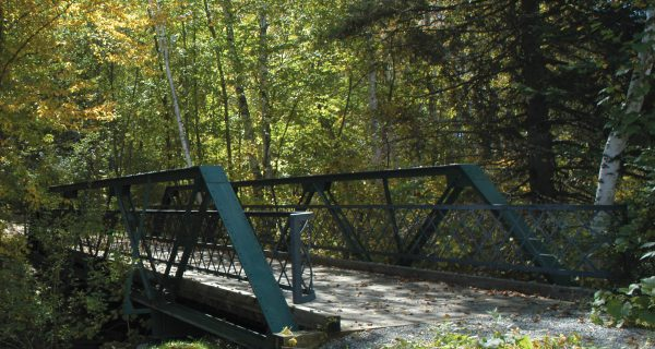 Barton Historic Park Bridges
