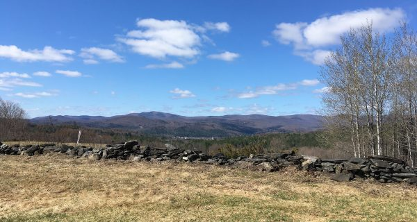 With One Month To Go, Groups Push To Raise Funds For Exit 4 Land | Vermont Public Radio