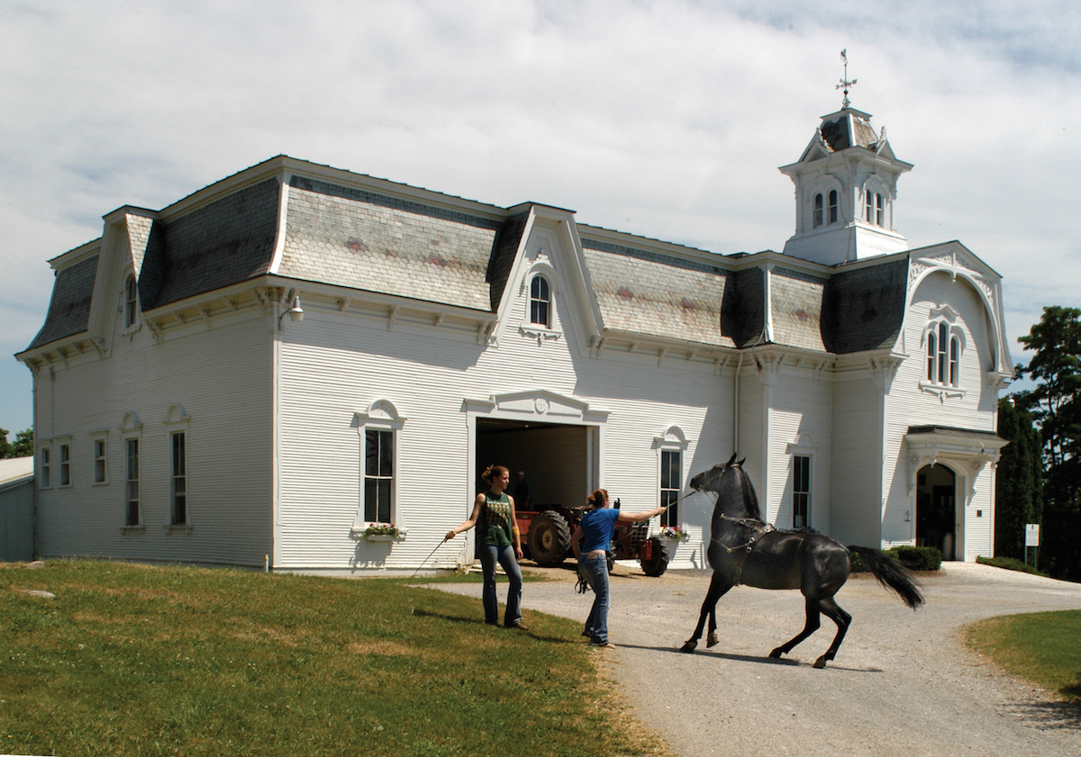 The University Of Vermont Owns And Operates The Morgan Horse Museum.