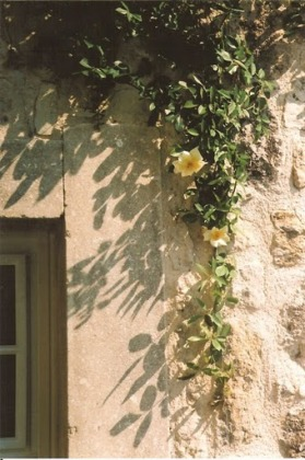 Provence 02